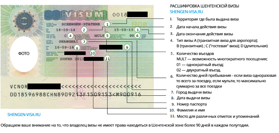 шенгенская виза расшифровка текстов и обозначений на визе в италию